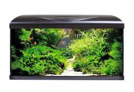Acquario Amtra System 80 LED Nero