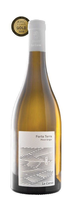 Forte Terra Pinot grigio