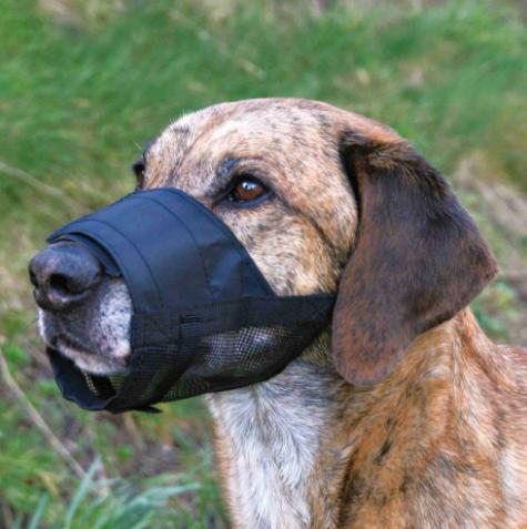 Museruola per cani  con inserti in rete Trixie