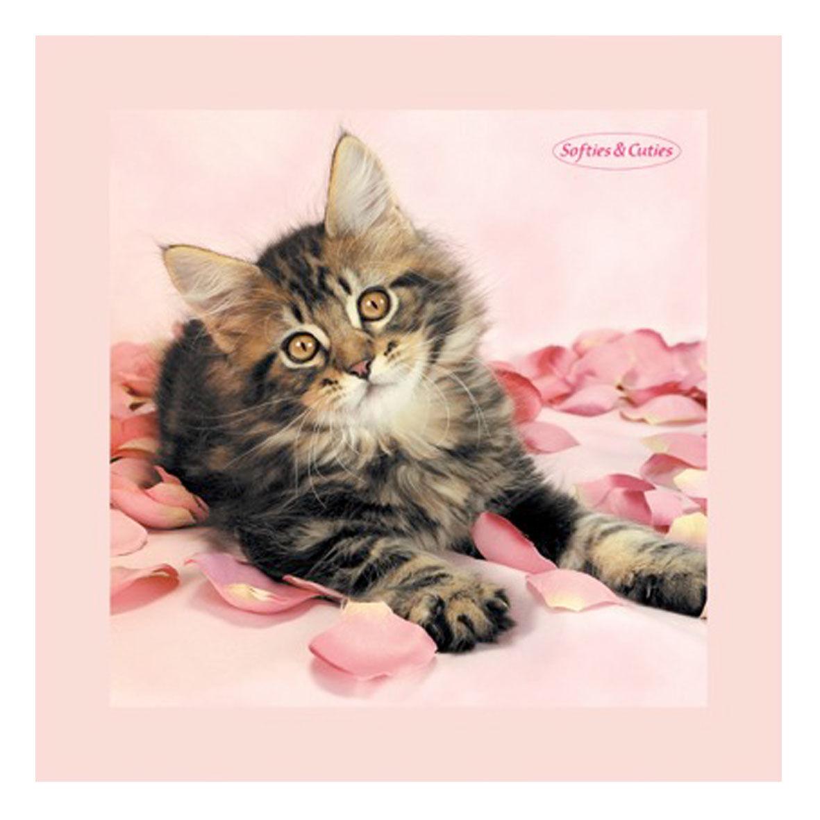 GATTO quadro in legno pannello d'arredo rosa SOFTIES & CUTIES 20x20 cm idea rega