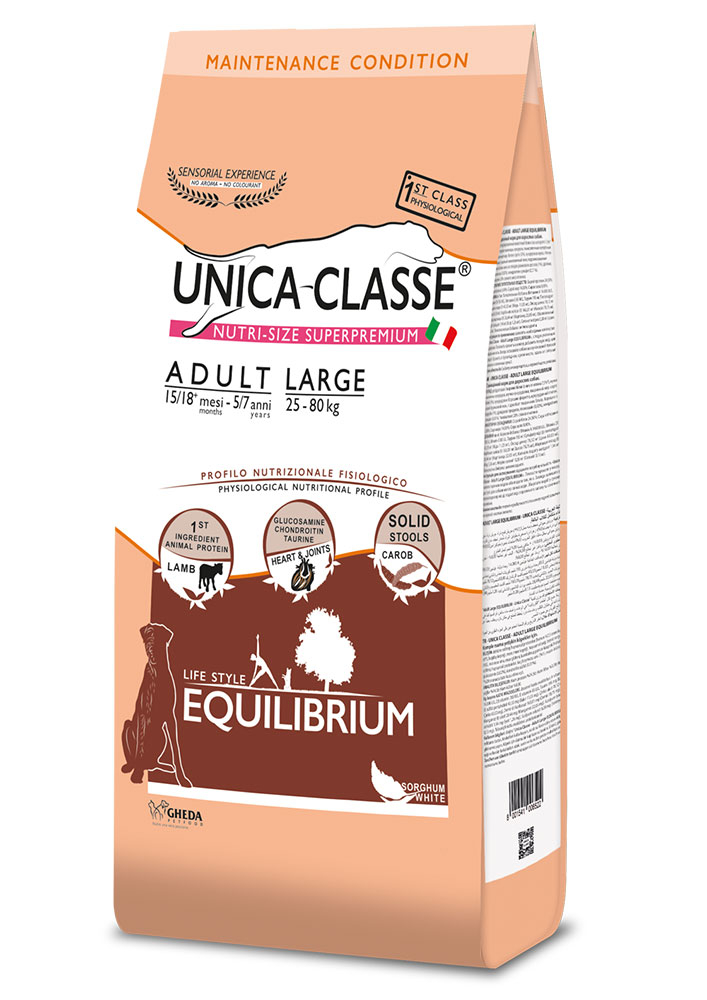 Adult Large Equilibrium