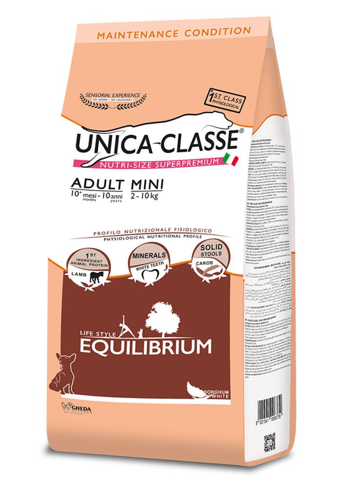 Adult Mini Equilibrium - Agnello