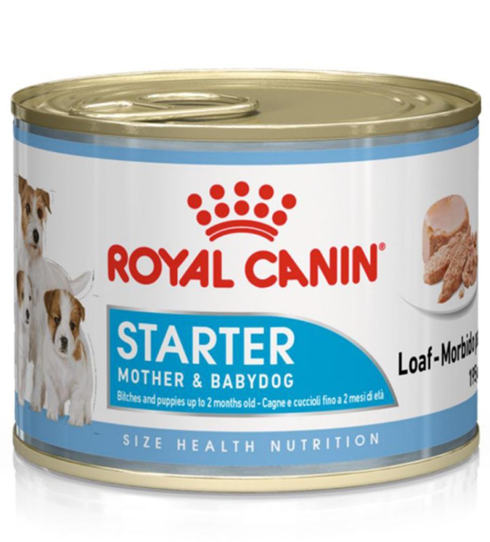 Royal Canin - Size Health Nutrition - Starter Mousse - 195g x 6 lattine