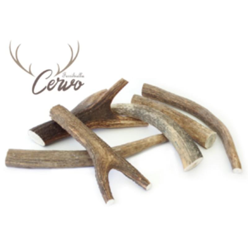 CORNO DI CERVO-FERRIBIELLA LARGE  76-150 GR