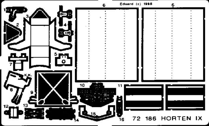 HORTEN IX / GO-229