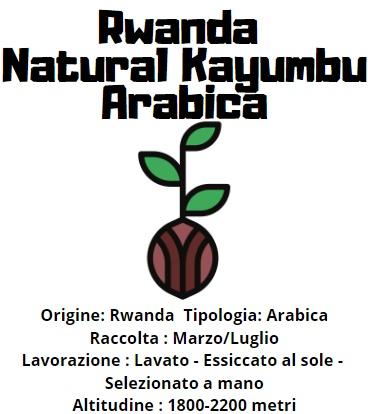 Rwanda Natural Kayumbu  Arabica 200gr in grani tostatura media/scura-2