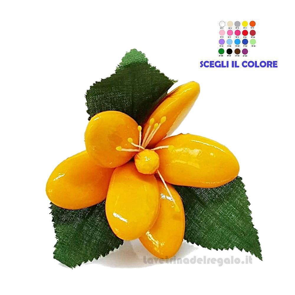 Magnolia gialla Fiore di confetti  in cellofan William Di Carlo Sulmona - Italy