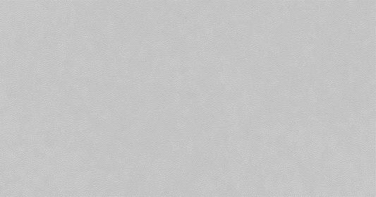 COLLEZIONE SOFT MATT SILVER CM.22,5X45 1° SCELTA