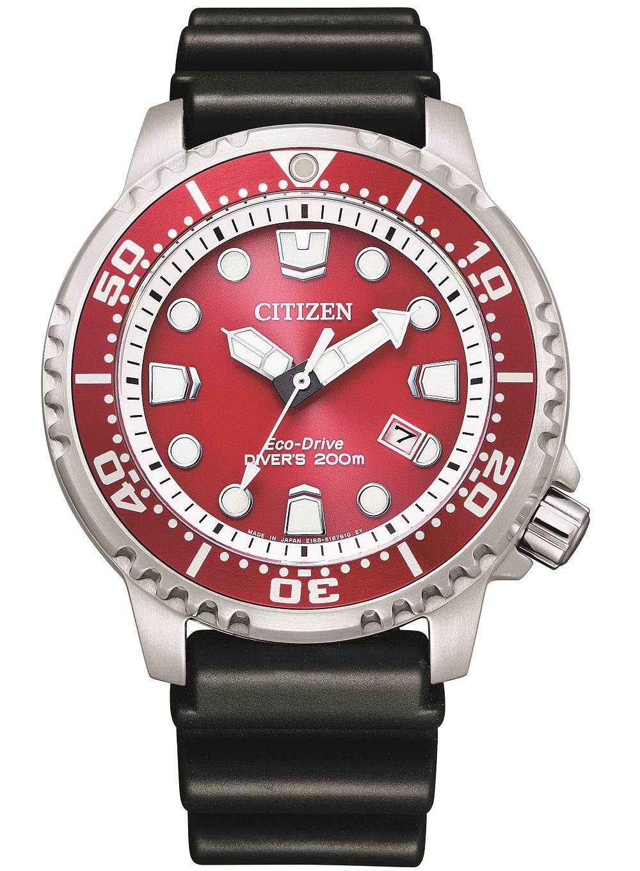 Citizen Diver's 200 mt. Quadrante bordeaux, cinturino gomma
