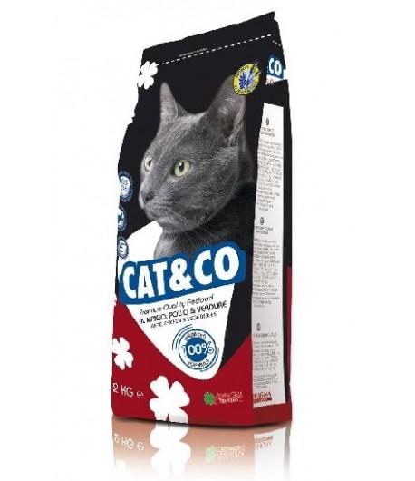 CAT&CO ADULTO 20KG