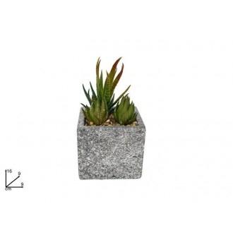 Due Esse Pianta Grassa Con Vaso Quadrato Con Decorazione Tipo Pietra Decorare Giardino Adatto a Spazi Verdi