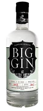 Captive Spirits Big gin CL. 70