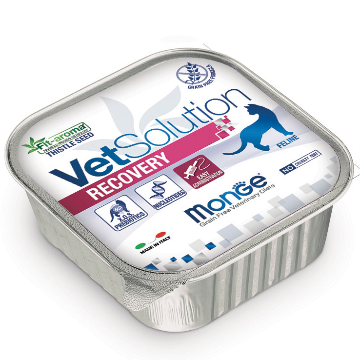 MONGE VET SOLUTION RECOVERY FELINE PATE' ADULT 100 GR