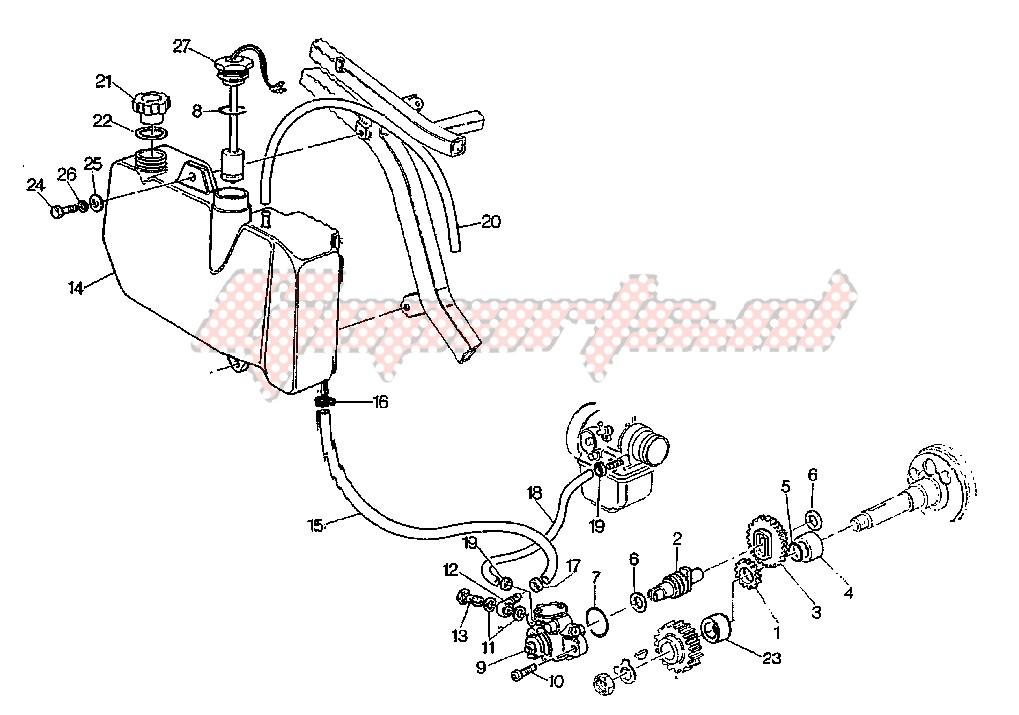Albero e Ingranaggio Cagiva W8/Mito/Raptor/Roadster/Supercity