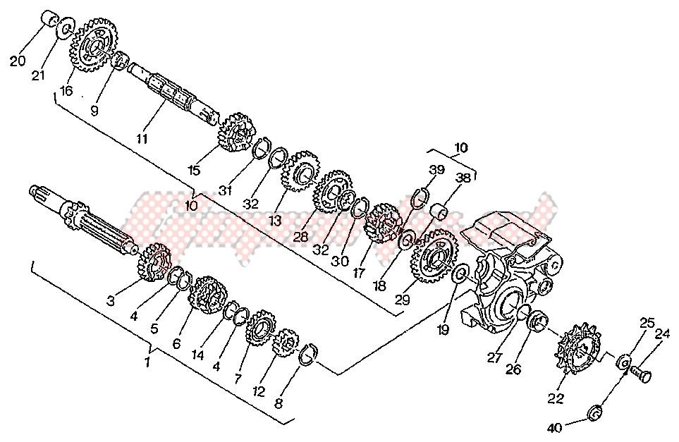 Ingranaggio Condotto 3-4A Z17-21 Cagiva W8/Mito/Raptor/Roadster/Supercity