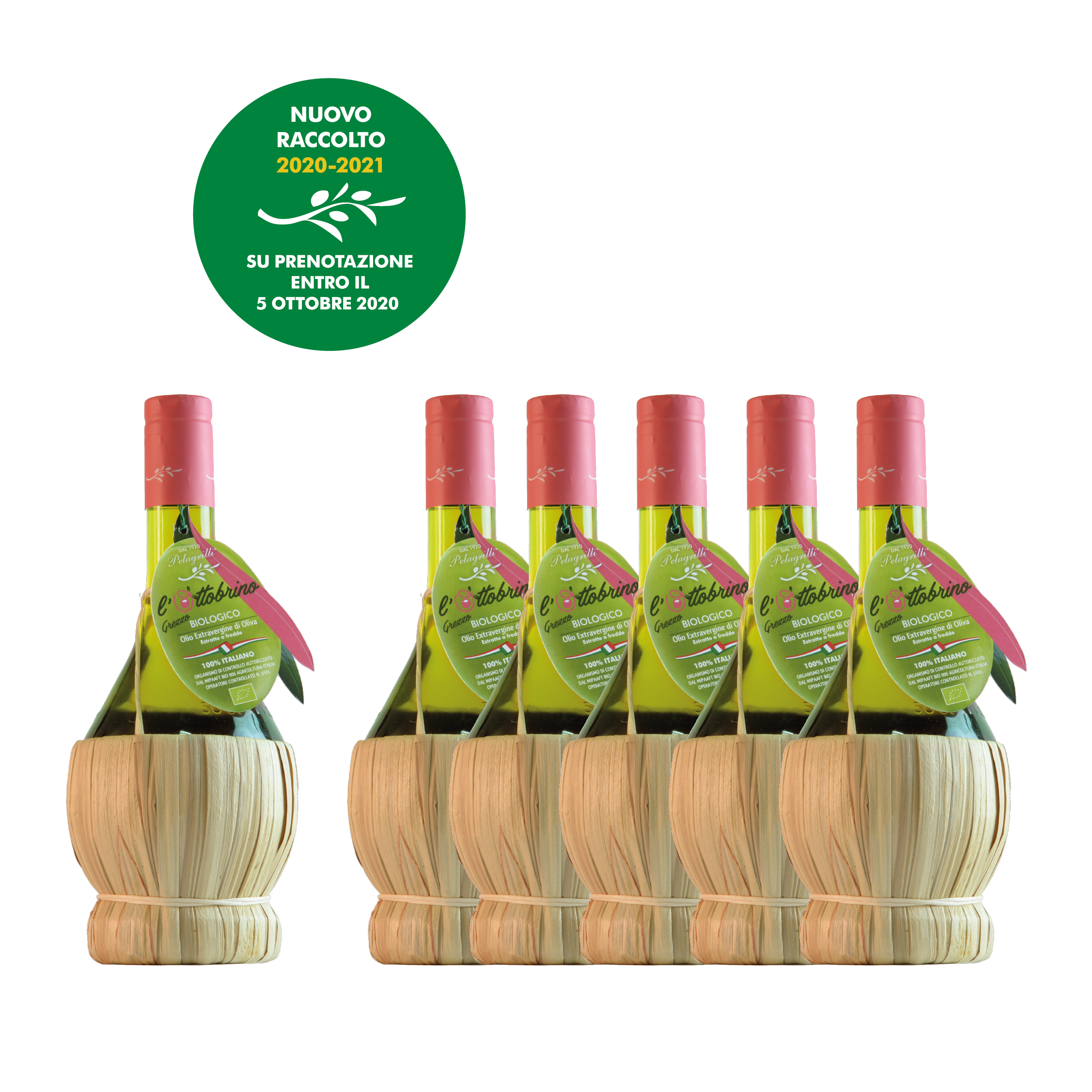 L' OTTOBRINO GREZZO - BIOLOGICO Confezione da 6 Fiaschi da LT 0,50 ciascuno - Olio Extravergine di Oliva 100% italiano - Raccolto 2020-2021 - estratto a freddo