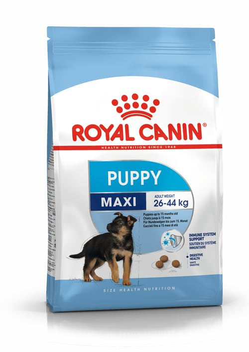 ROYAL CANIN Maxi Puppy Secco Cane 15kg