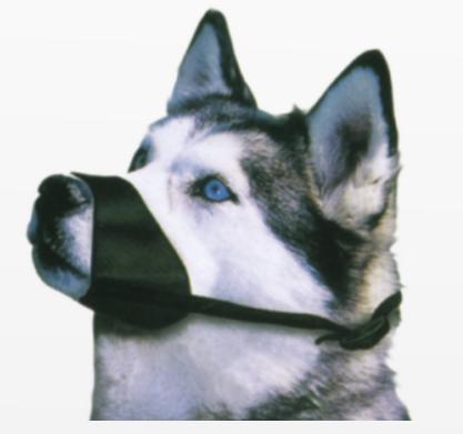 Museruola in nylon per cani disponibile in diverse misure Croci