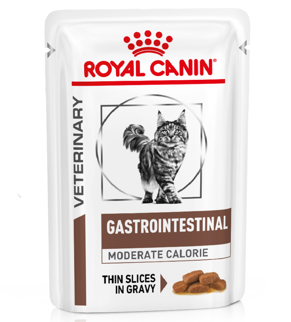 Royal Canin - Veterinary Diet Feline - Gastrointestinal Moderate Calorie - BOX 12 bustine 85g