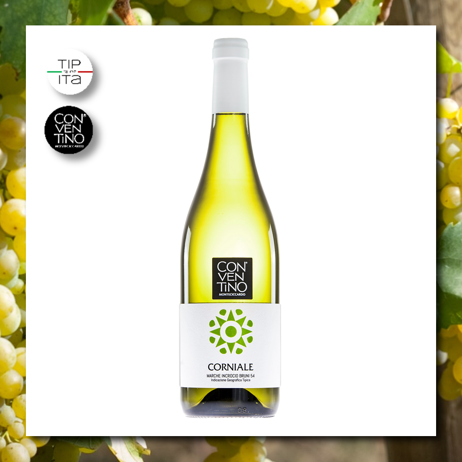Corniale IGT - Vino Bianco BIO 2018 - 75cl