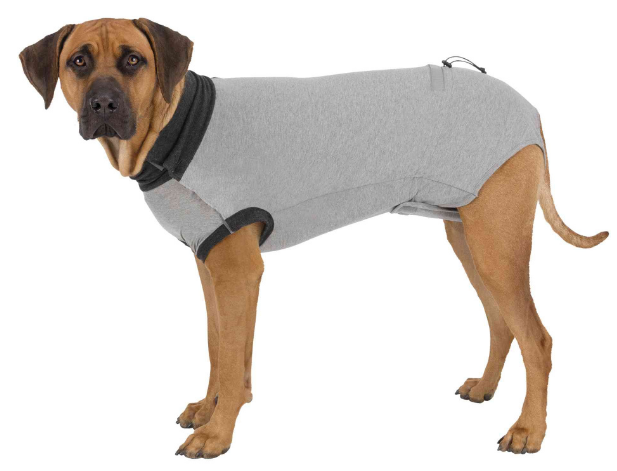 Body protettivo per cani TRIXIE