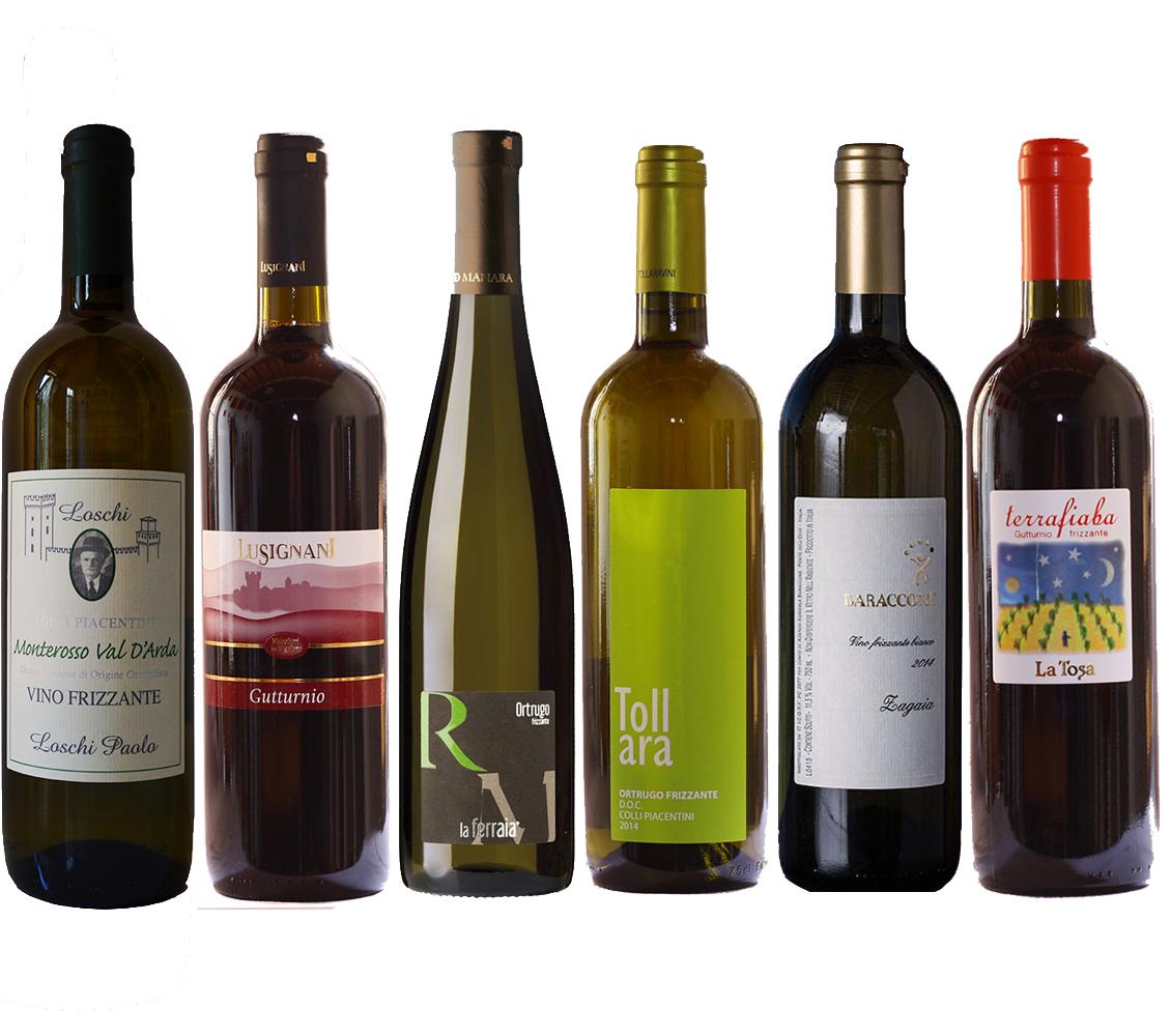 6 vini frizzanti