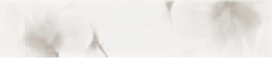 COLLEZIONE SOFT BARRA SILVER FLOWERS CM.5,4X22,5 SHINNY 1° SCELTA