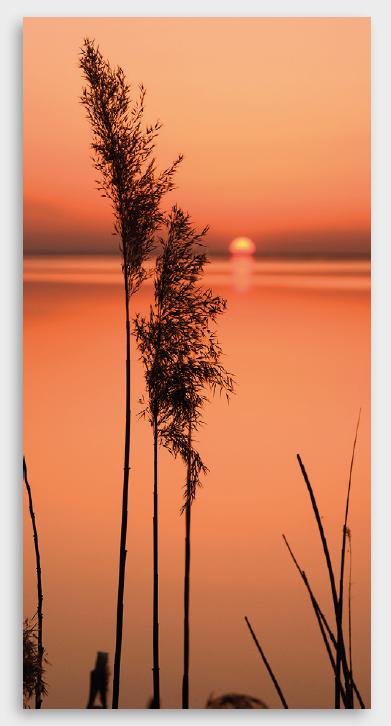 Tela Orange Sunset