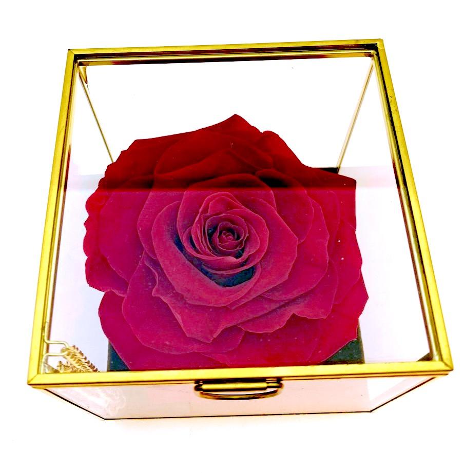 Cubetto con rosa stabilizzata