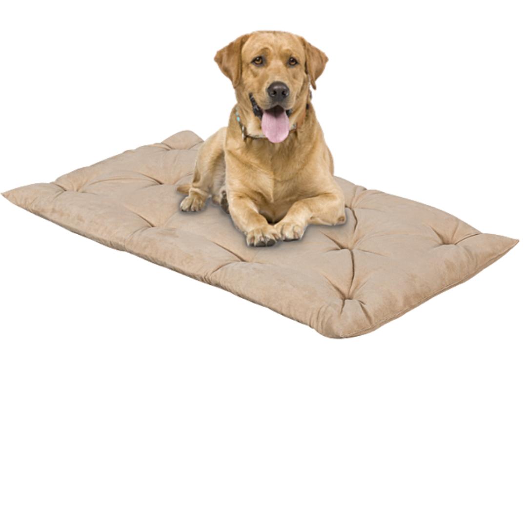 Letto per Cani alto 8 cm Lavabile Materasso Cuscino in Waterfoam Cuccia Tappeto Imbottitura 100% Fiocco Colore Beige | Fufy