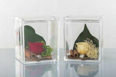 Scatoline plexiglass con rose stabilizzate Cuorematto Cuor di rosa D5755