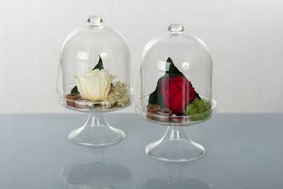 Alzatine con rose stabilizzate Cuorematto Cuor di rosa D5752 2 pz