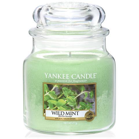 Yankee Candle - WILD MINT - GIARA MEDIA