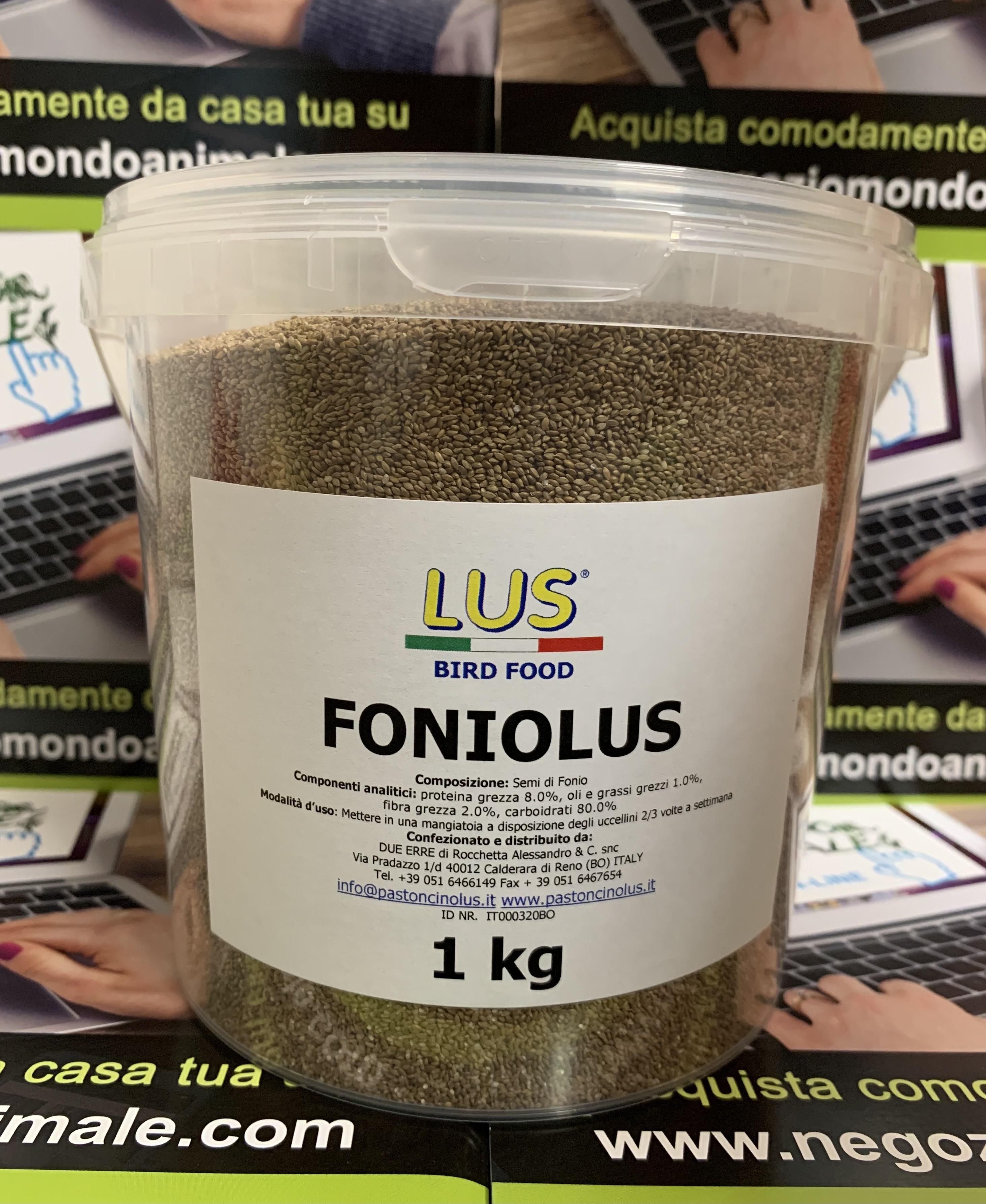 SEMI FONIOLUS 1 kg