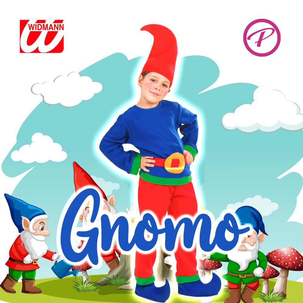 Costume Gnomo