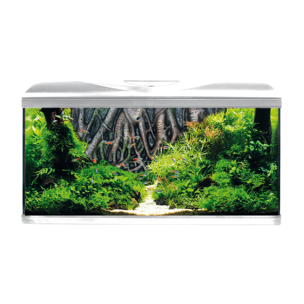 ACQUARIO AMTRA SYSTEM 80 LED WHITE ROOT BACKGROUND