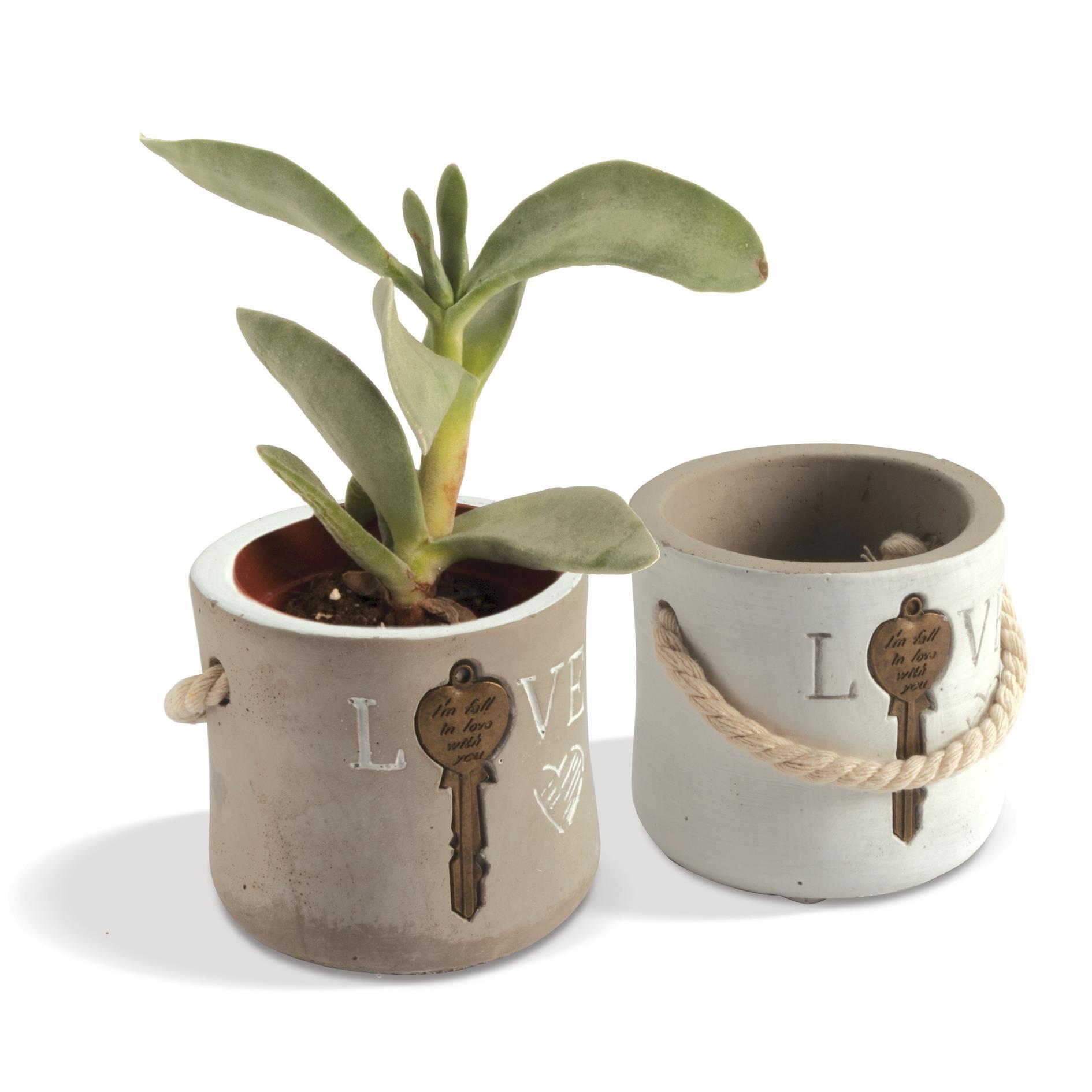 Quadrifoglio - collezione Clizia, p/piante con scritta Love