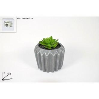 Due Esse Pianta Grassa Con Vaso Grigio Decorato 12,5 cm Decorazione da Esterno Per Giardino