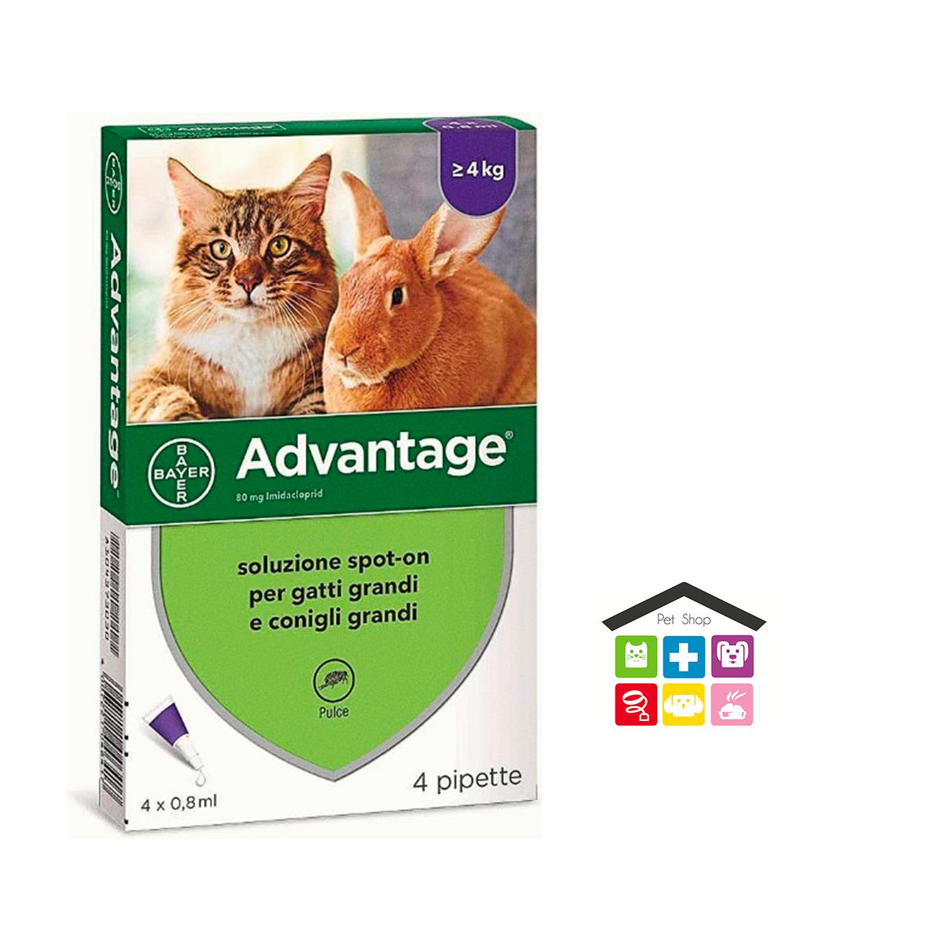 Advantage 80 Soluzione Spot-on Gatti/Conigli grandi > 4 kg