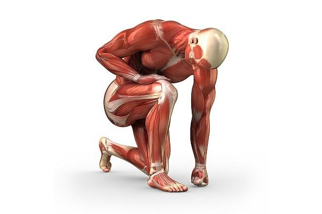Trauma muscolare nello sport: come evitarlo