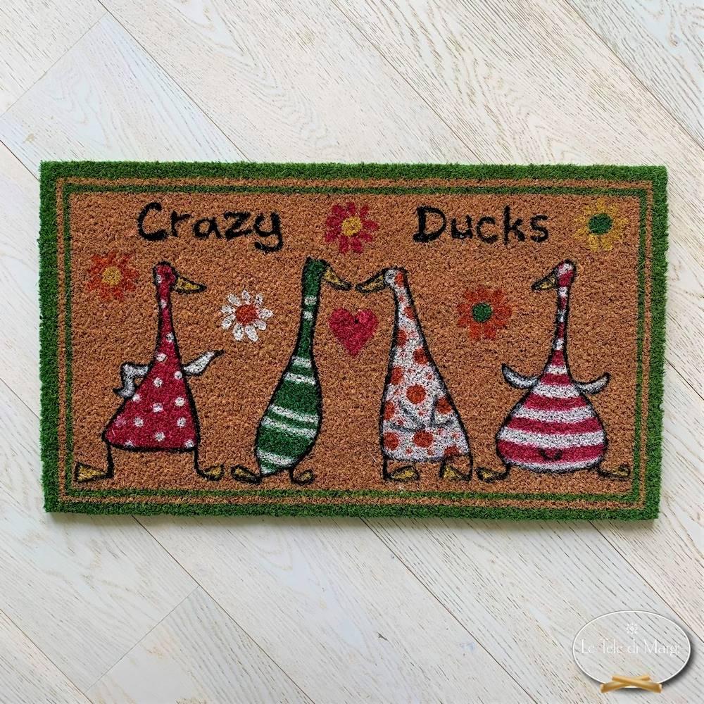 Zerbino crazy ducks