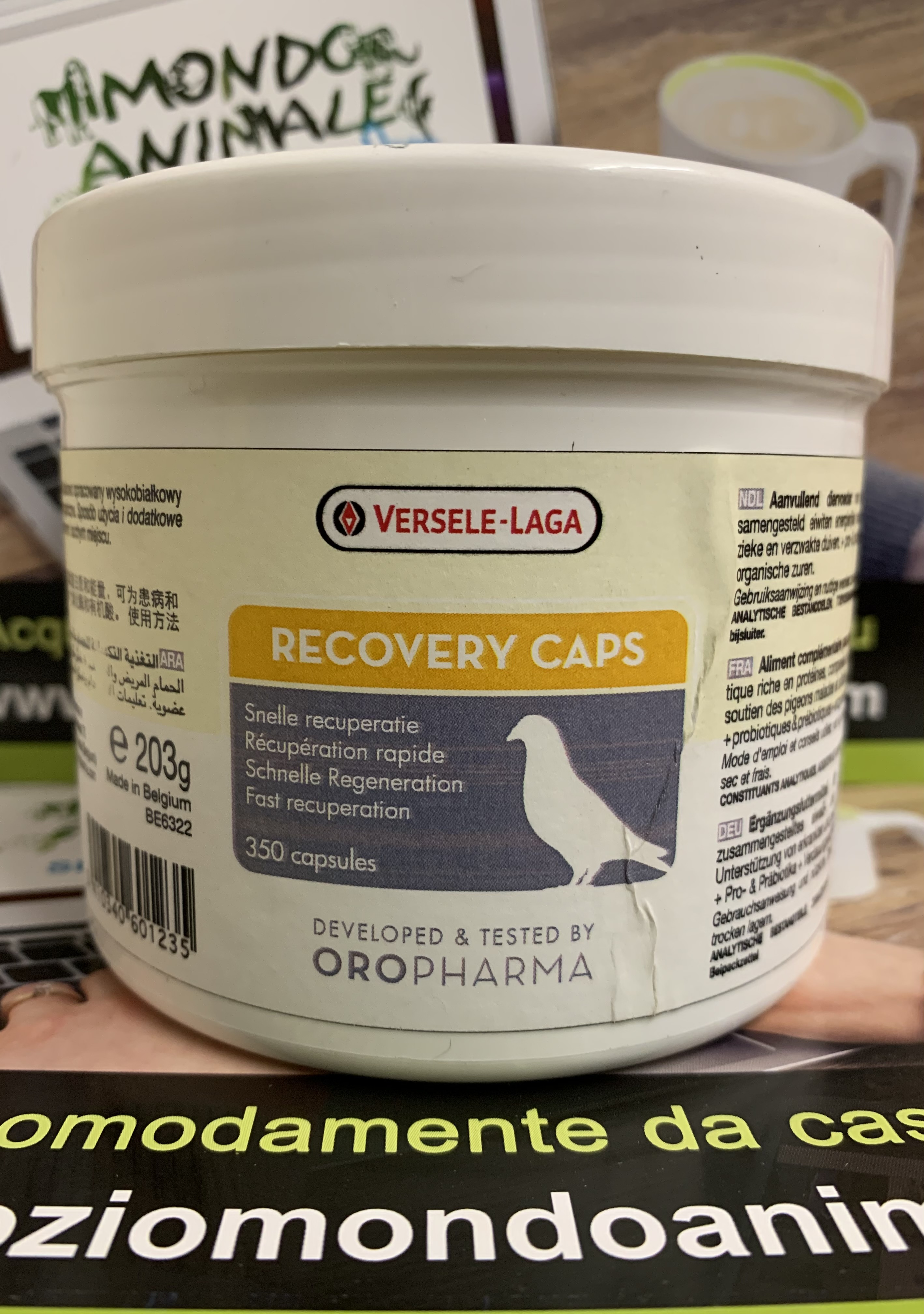 RECOVERY CAPS 350 capsules