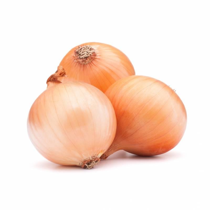 Cipolla dorata - 1 Kg