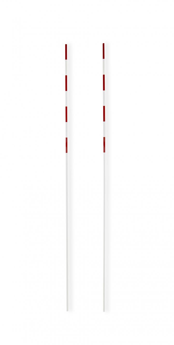 Antenne per reti da pallavolo