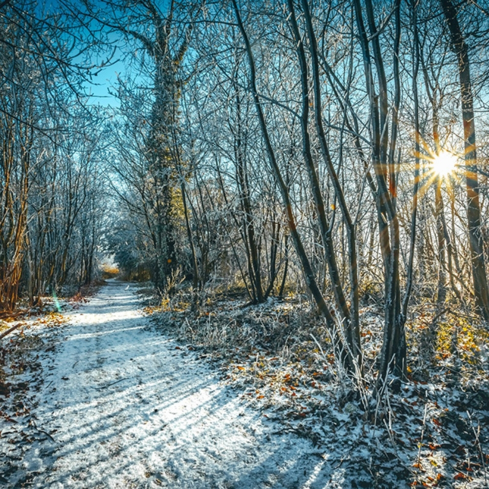 Garmont - Best Trails To Experience In Winter
