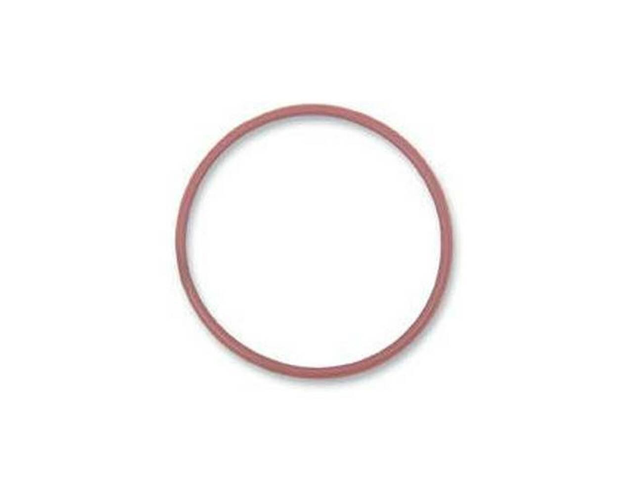 O- ring 420230920