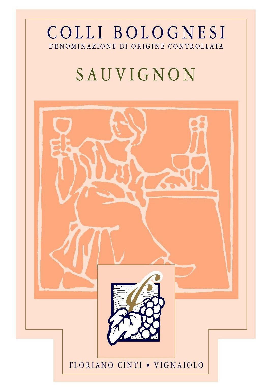 12 bottiglie di Sauvignon 2020
