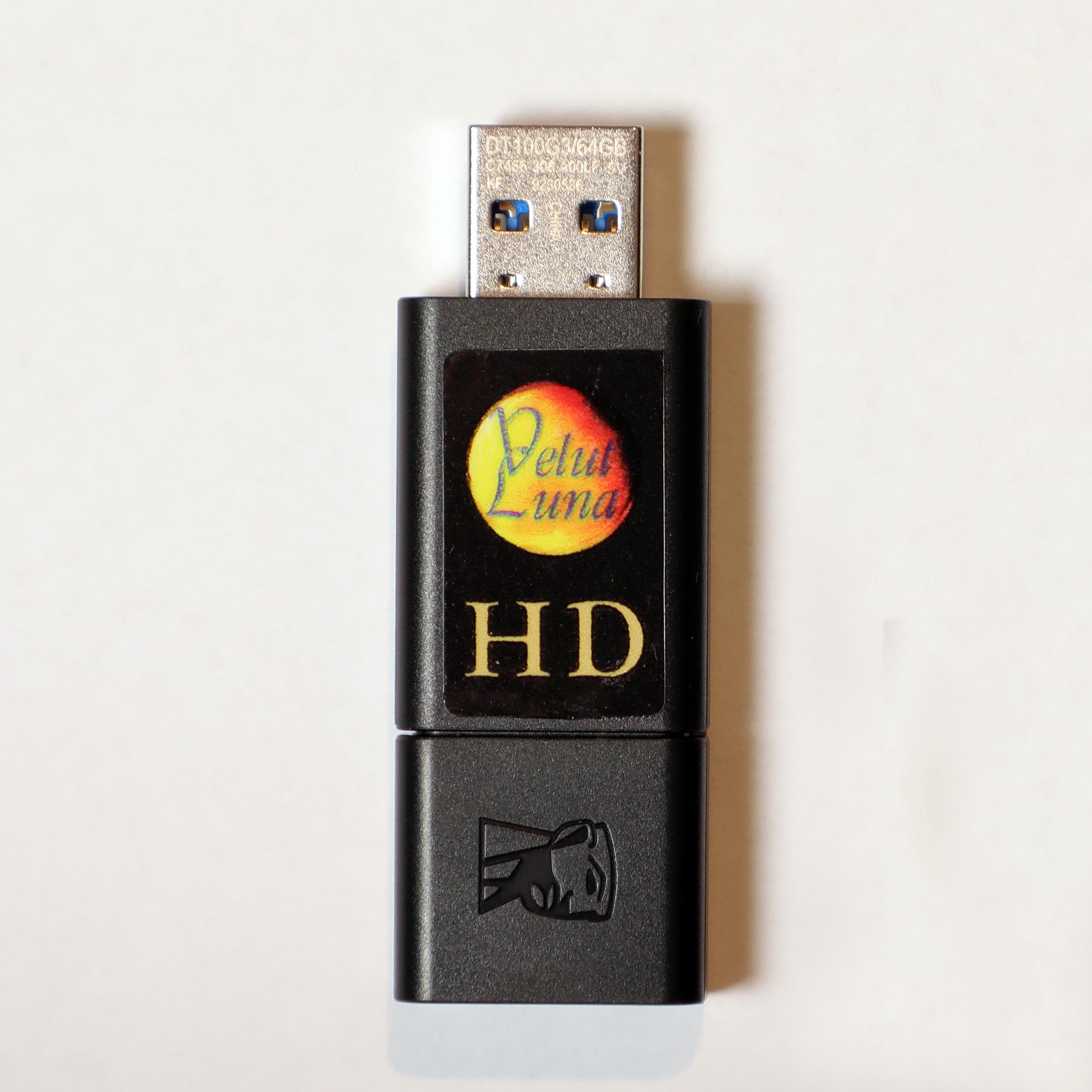 FILES HD COLLECTION 1 - 18 ALBUM / 244 TRACCE HD - USB 64GB